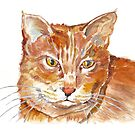 Ginger Tabby by Maree Clarkson