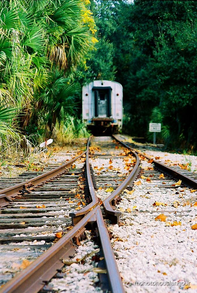 The Rails by monotonouslangour