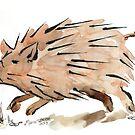 Warthog sketch by Maree Clarkson
