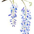 purple wisteria  by ColorandColor