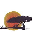 African Sunset silhouettes by Maree Clarkson