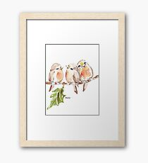 Three Little birds ♪♪♪♫ Framed Print