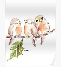 Three Little birds ♪♪♪♫ Poster