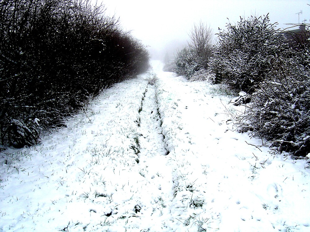 Snowy Path by leatherdykeuk