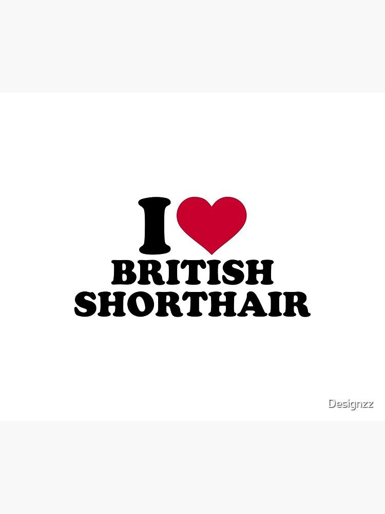 Amo British Shorthair de Designzz