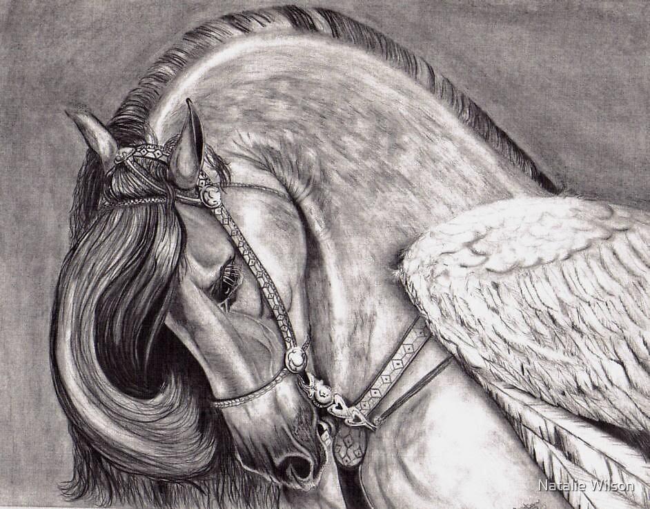 Pegasus by Natalie Wilson