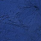 Pacific by VenusOak