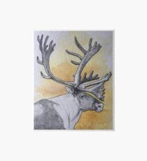 Caribou Art Board