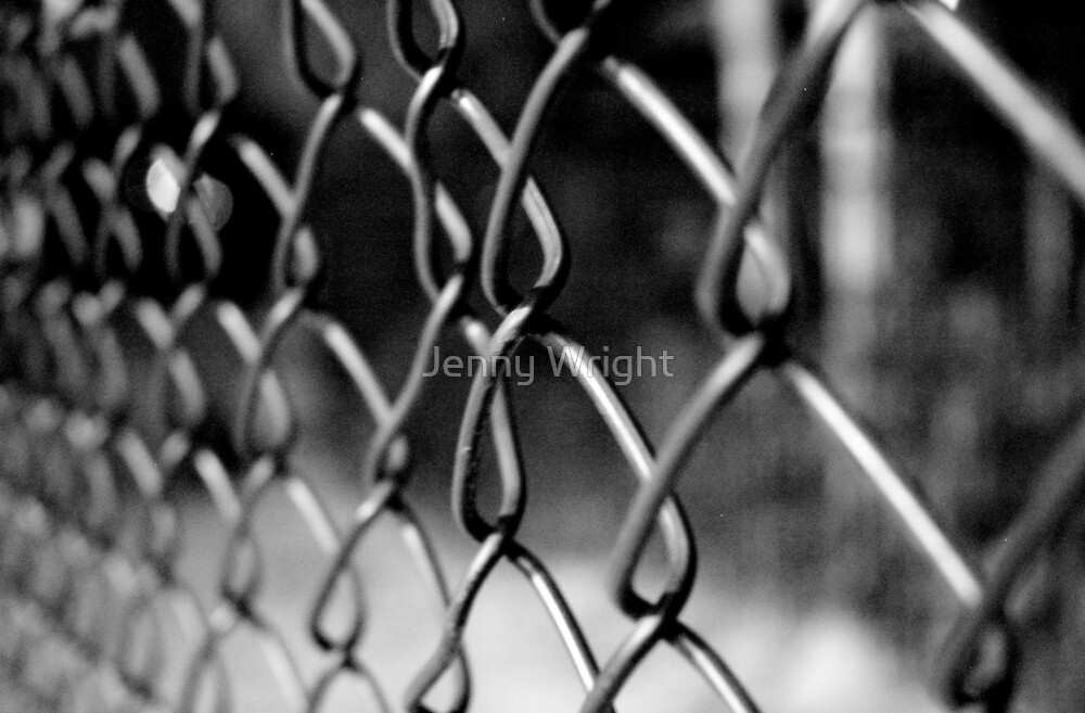 Chain Link Fence by Jenny Wright