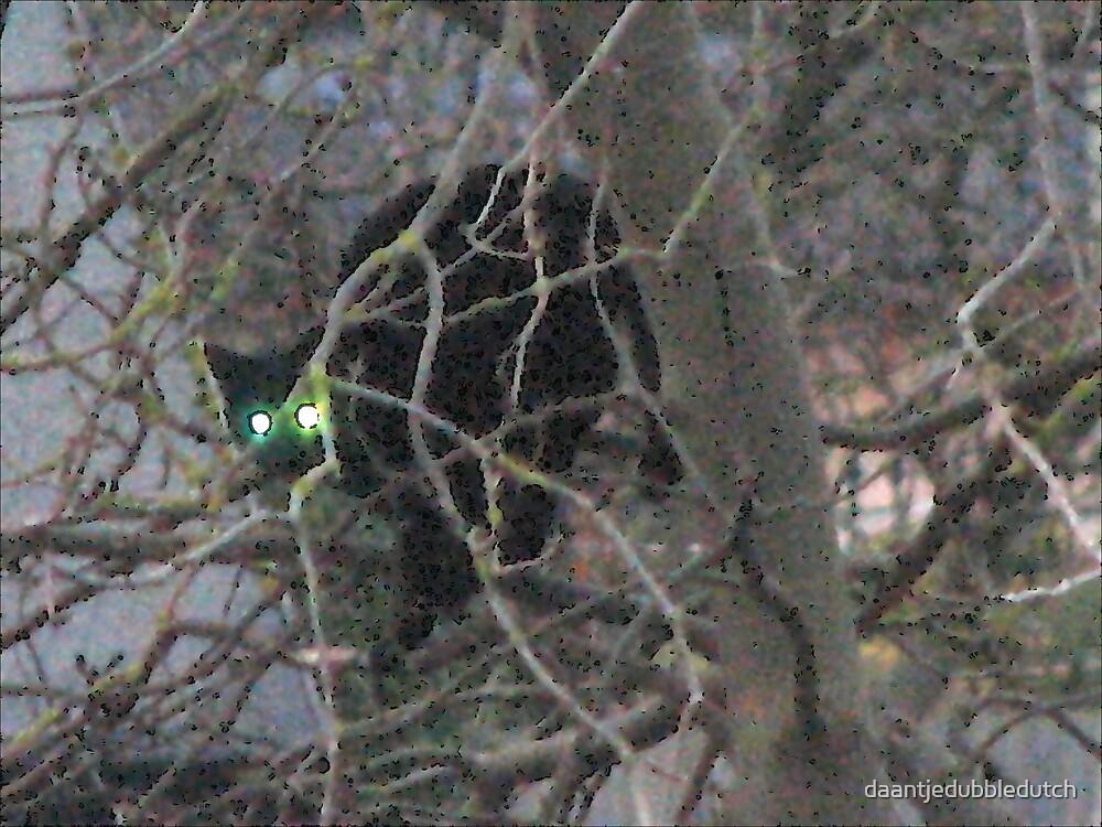 cat in tree by daantjedubbledutch