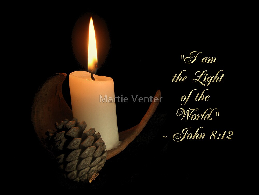 Light in the Darkness Series 4 by Martie Venter