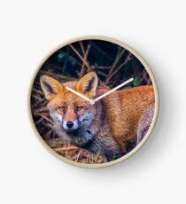 Red Fox  Clock