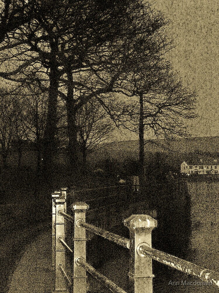 lake side by Ann Macdonald