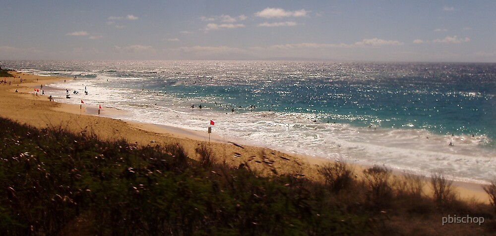 Hawaiian Splendor by pbischop