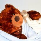 Teddy bears' nap time by missmoneypenny