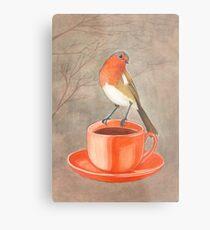 coffee loving robin bird Metal Print
