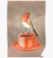 coffee loving robin bird Poster