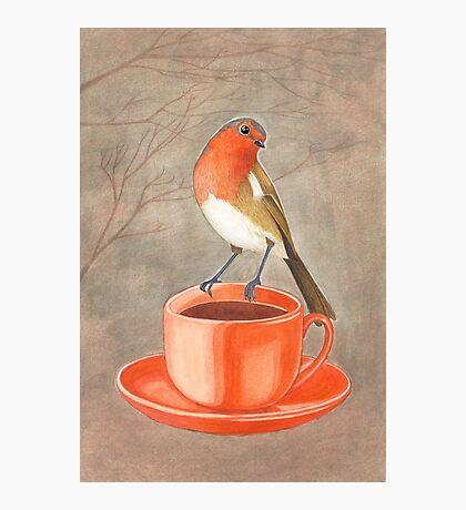 coffee loving robin bird Photographic Print