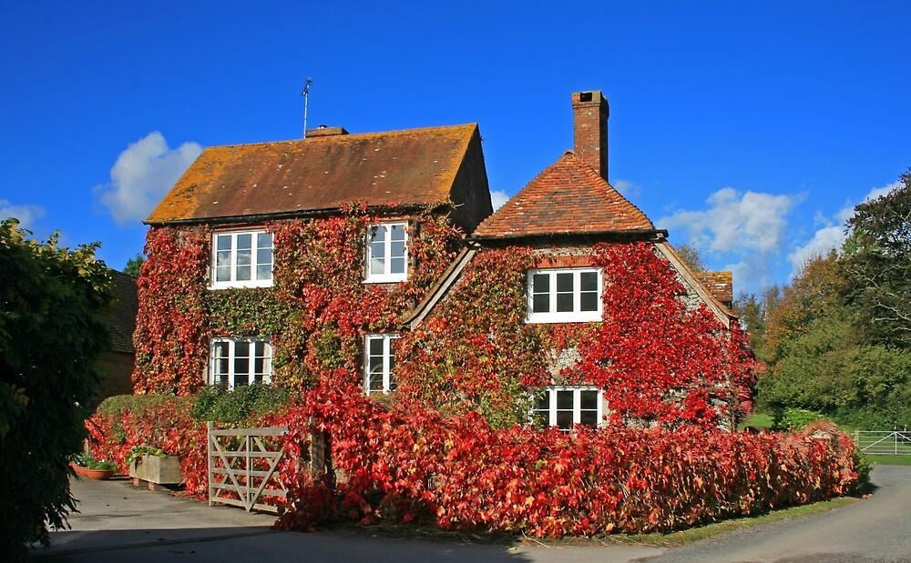 South Downs Farmhouse II by RedHillDigital