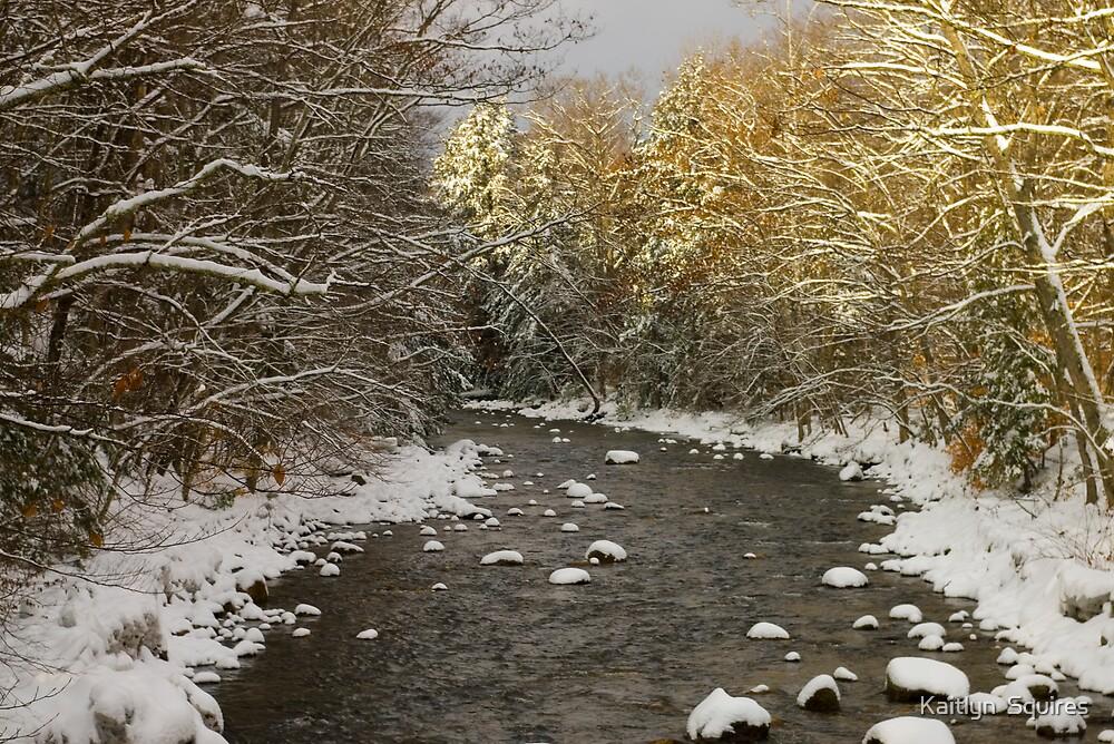 Winter wonderland by Kaitlyn  Squires