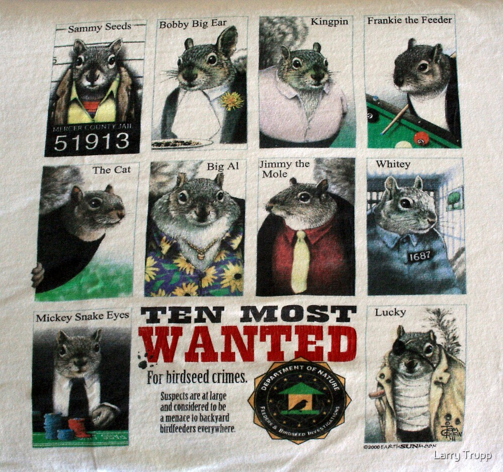 Ten Most Wanted!!! by Larry Trupp