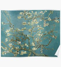 Almond Blossom - Vincent Van Gogh Poster