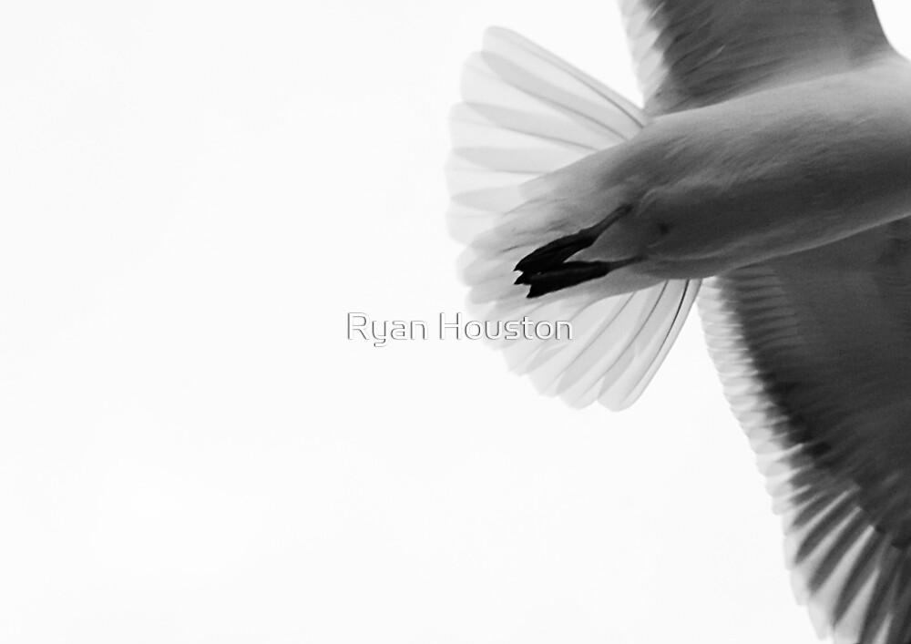 Speed of Flight by Ryan Houston