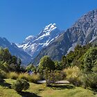 Mt. Cook from the Aoraki National Park, New Zealand by Elaine Teague