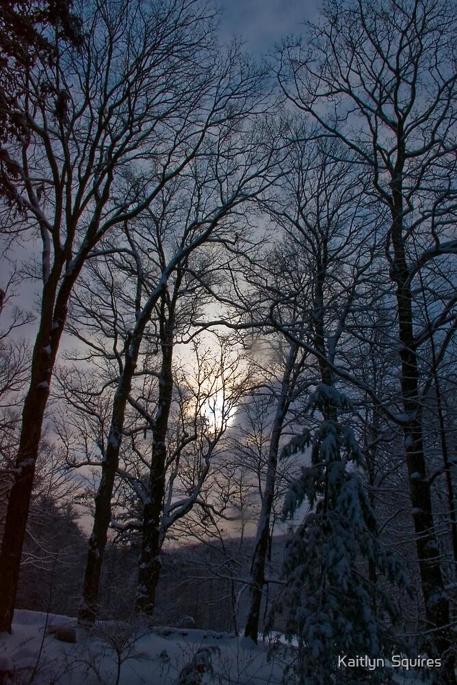 Eerie Winter by Kaitlyn  Squires