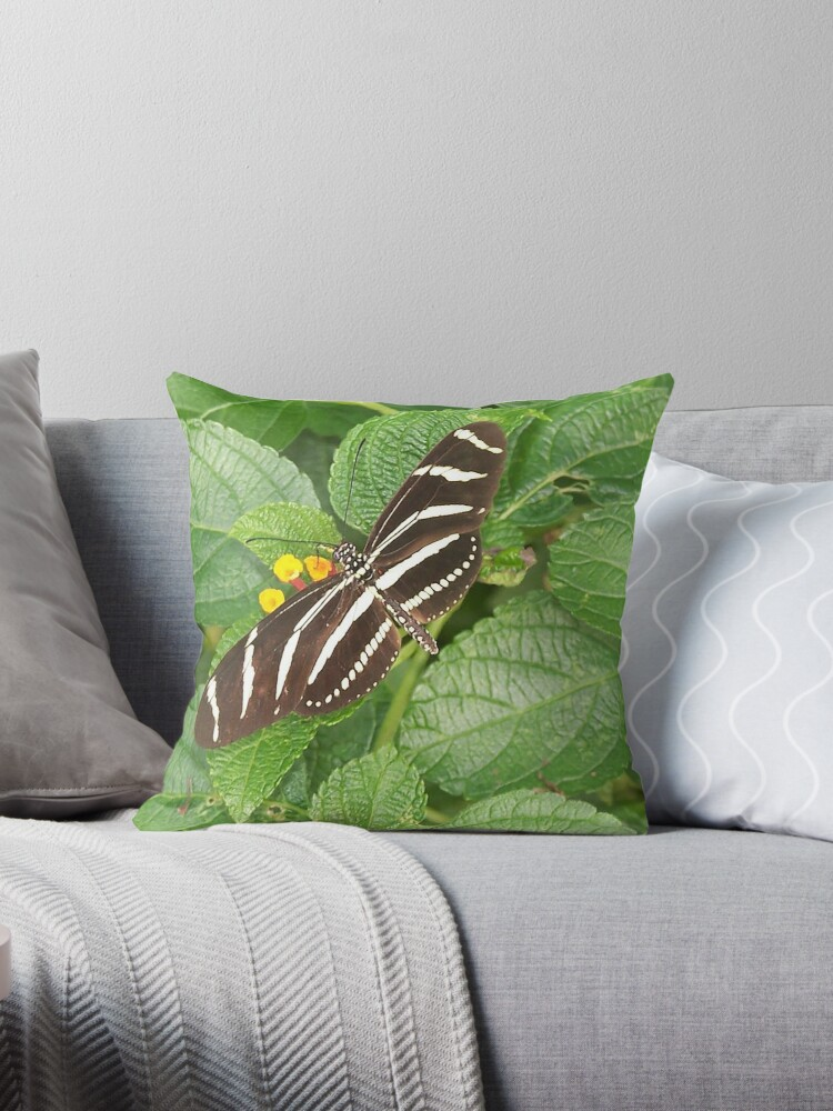 Zebra by Sonya LaFrance by LaFranceDesigns