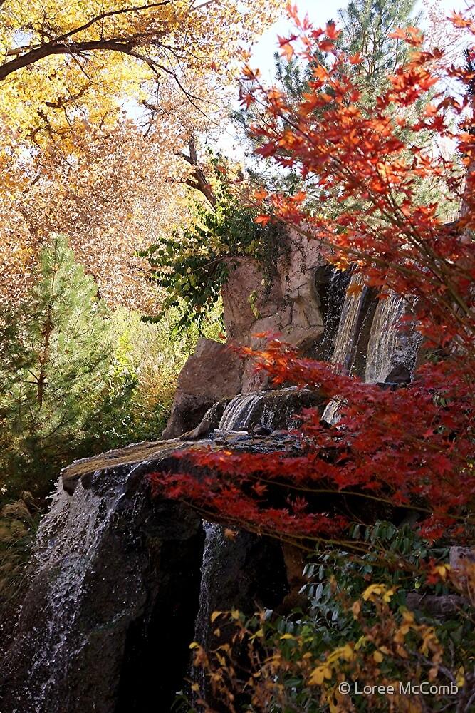 Autumn Falls by © Loree McComb