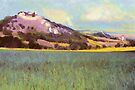 Falkenstein Landscape In Lower Austria by Menega  Sabidussi