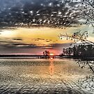Sunrise by Lynne Prestebak