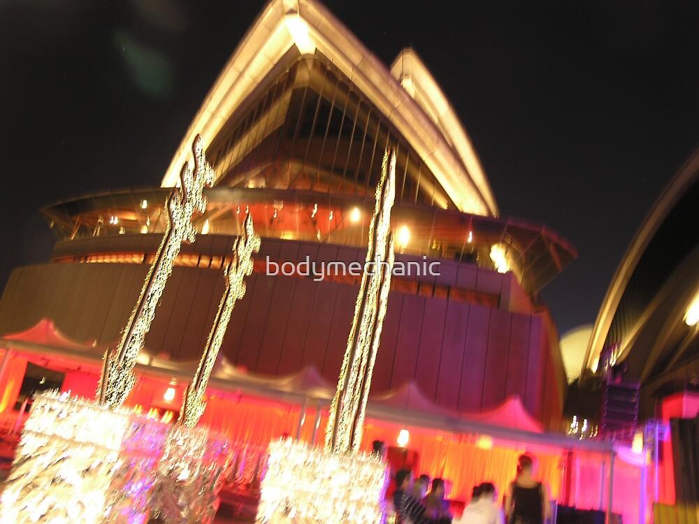 opera house new yr rehersals by bodymechanic