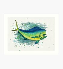 """Mahi Mahi Splash"" by Amber Marine ~ watercolor & ink dolphin fish / dorado painting, art © 2016 Art Print"
