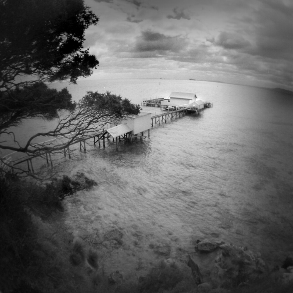 Sorrento by Craig Mitchell