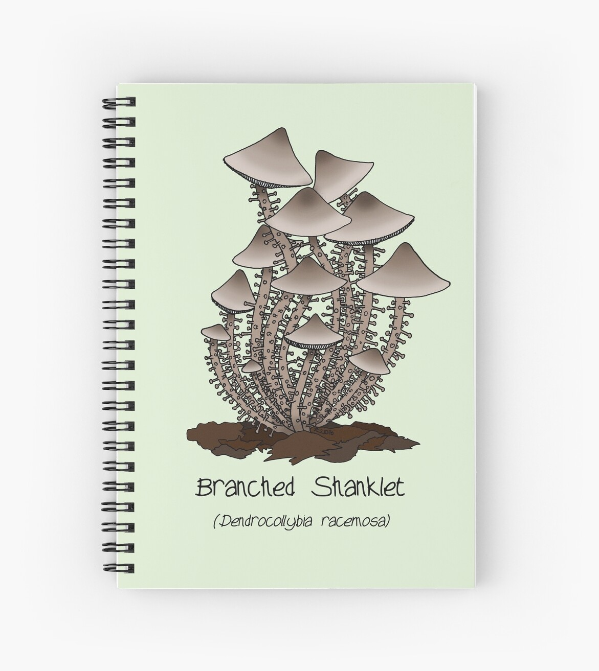 Branched Shanklet by Cartoon Neuron