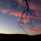 Beersheba Sunset by GailD