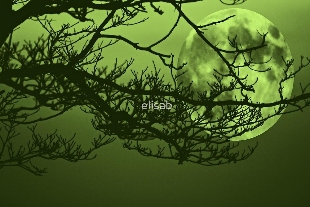 Green Moon by elisab