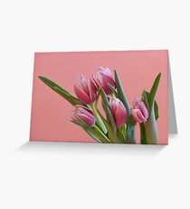 bouquet Beautiful Tulips pink color Greeting Card