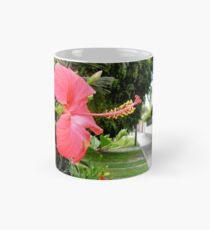 Red Hibiscus Flower in Lima Peru Classic Mug