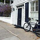 Historic Charleston, South Carolina, Street by Catherine Sherman