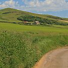 Wears Hill, Abbotsbury by RedHillDigital