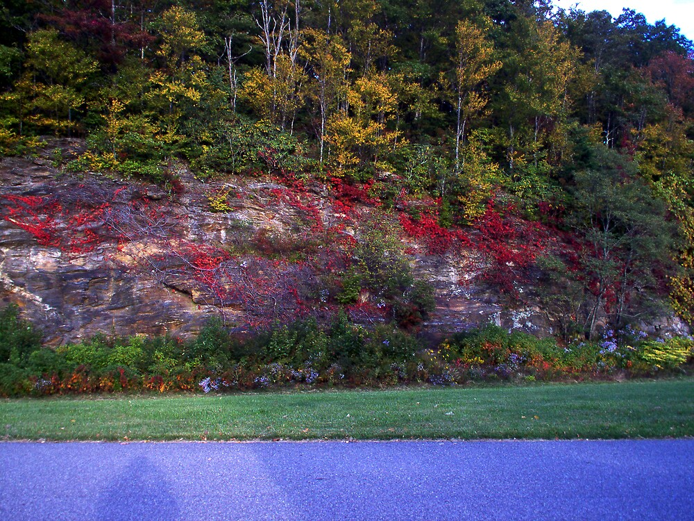 Autum On The Parkway by Allen Carr