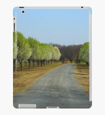 Pretty Drive iPad Case/Skin
