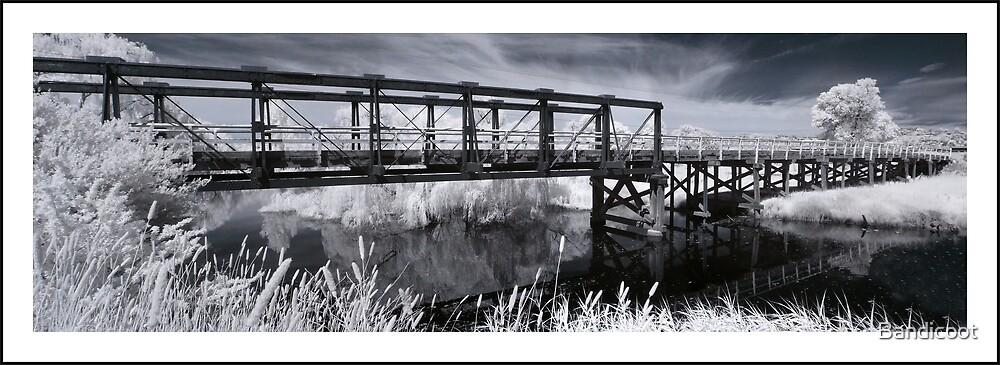 Old Bridge by Bandicoot