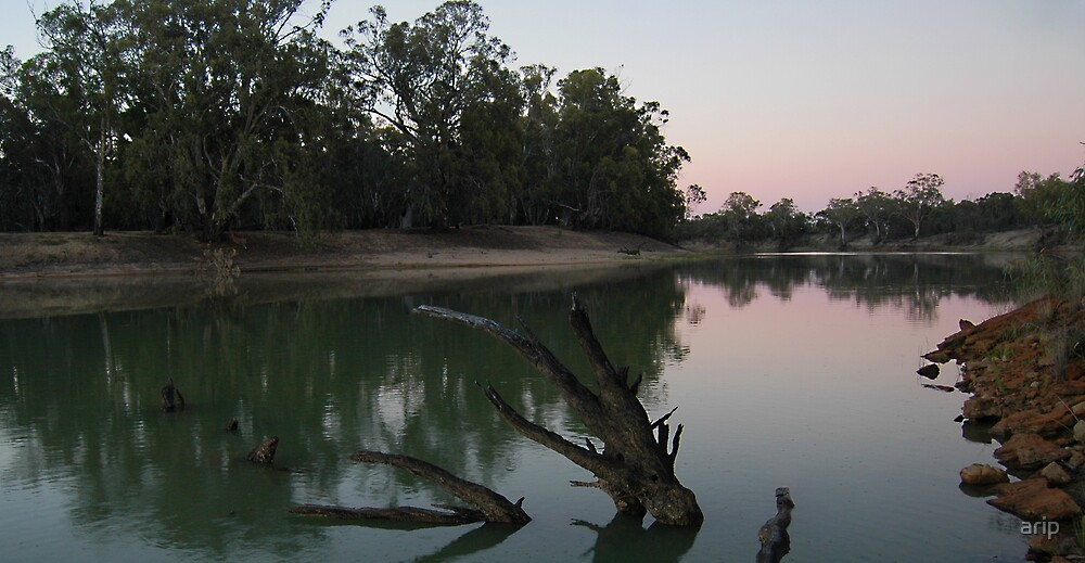 Murray River @ Sunset on Christmas Day by arip