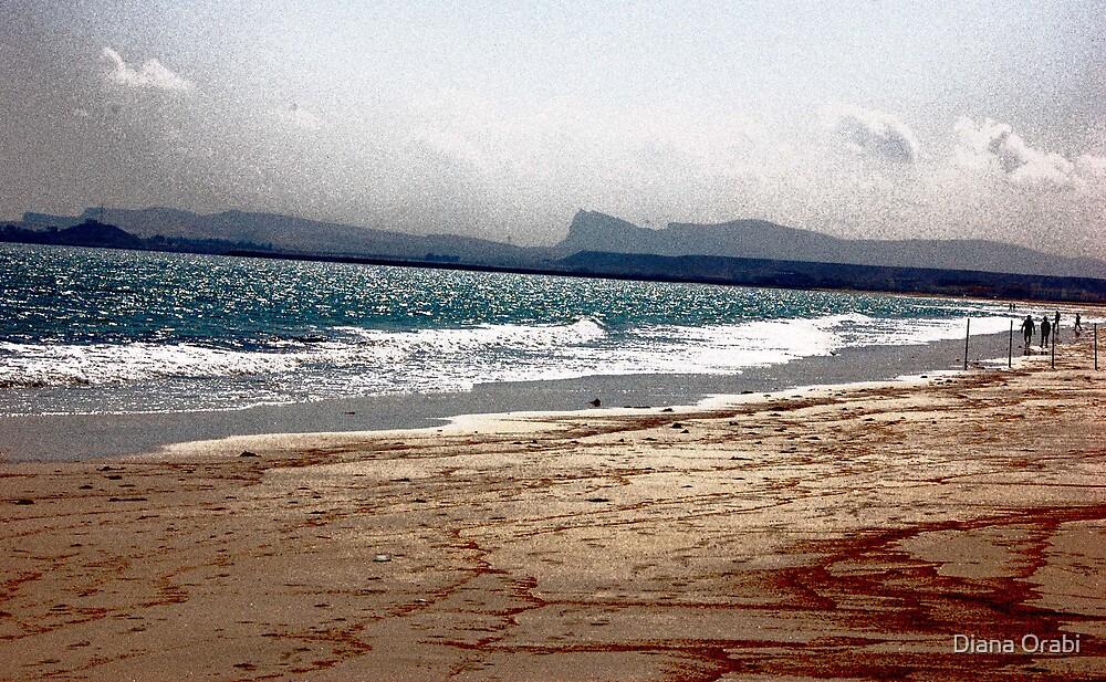 Oman by Diana Orabi