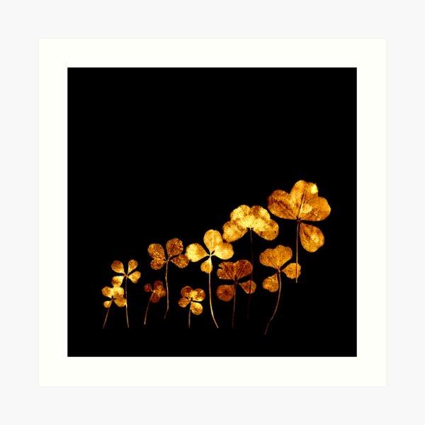 tréfle doré sur fond noir/golden clover on back background Art Print