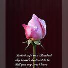 Beautiful Flowers by Gilberte